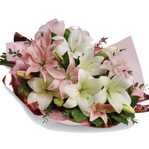Wonderfull Lilies