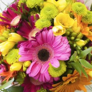 Αποστολή λουλούδια για Κατερίνη - Πιερία